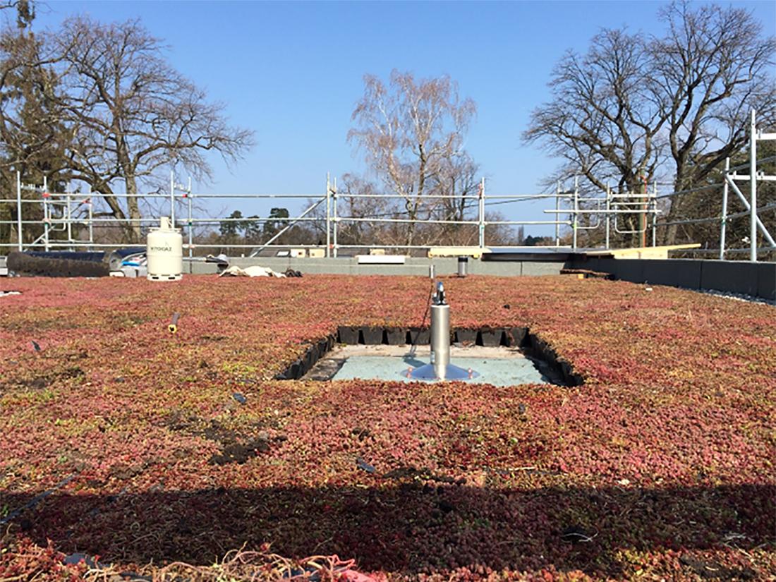 Installation ligne de BATILIGNE sur toiture végétalisée
